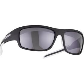 Alpina Testido Glasses black matt-white
